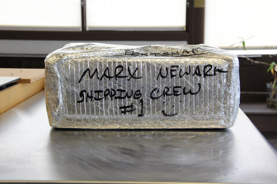 Newark Shipping Crew