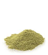 Sassafras Leaf